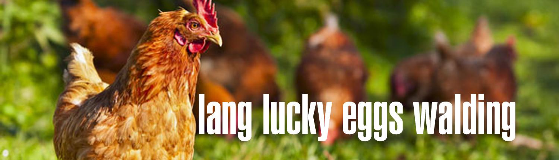 lang lucky eggs walding